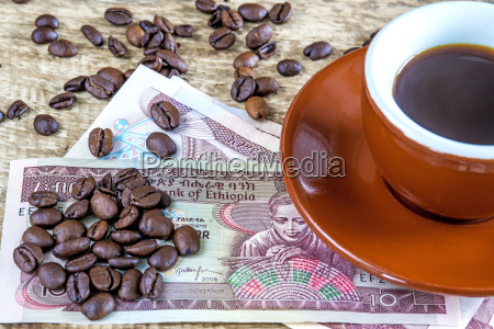 coffee beans from ethiopia