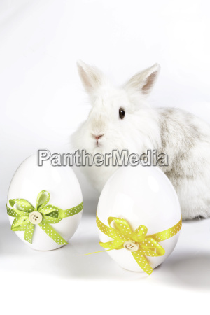 easter bunny with two decoration eggs