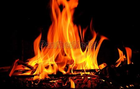 fire fire 01