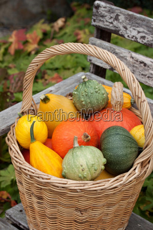 basket with colorful cans