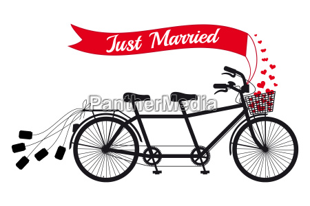 just married wedding tandem bicycle with