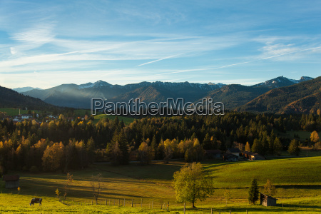 mountains field alps upper bavaria meadow