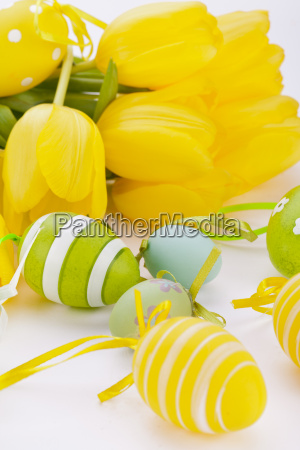 colorful yellow tulips with green leaves