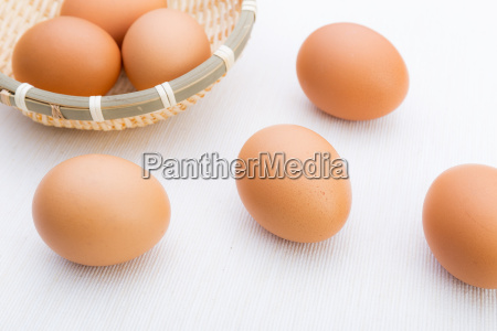 brown egg in basket isolated on