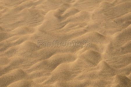 sand dune desert texture