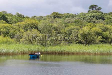 rowing boat on a quiet lake