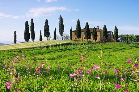 toskana haus mit blumen tuscany