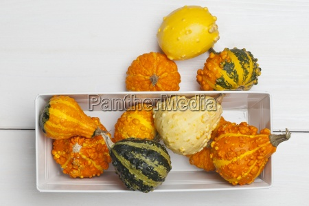 above arrangement assorted autumn vegetable autumn