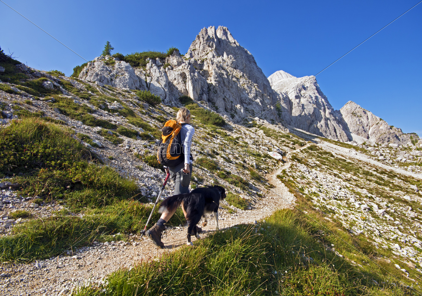 hiking - 11380475