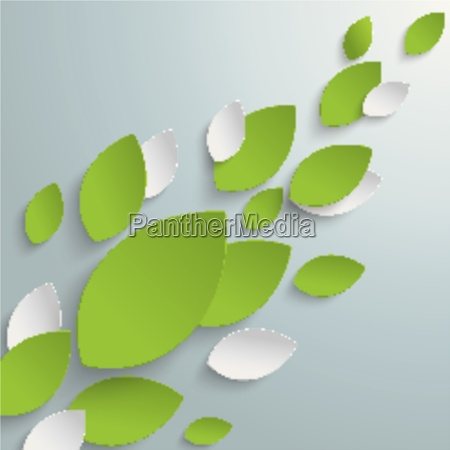 green leaves background piad