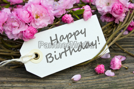 birthday card birthday text lettering english