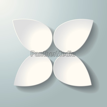 white blossom 4 options