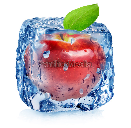red apple in ice