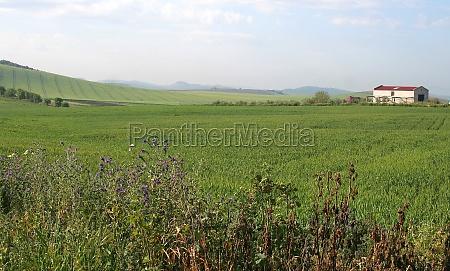 hill at guadalqivir