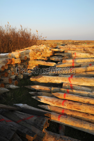 warehouse for wooden pole on lake