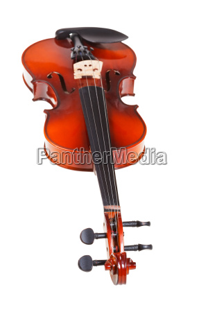view from fingerboard of classical violin