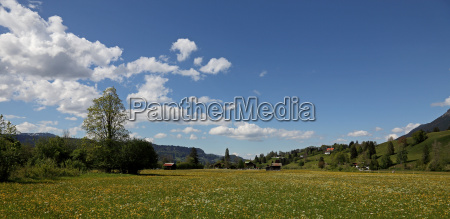 view over wide meadows to oberstdorf