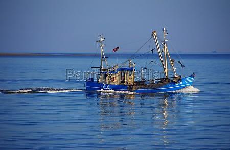 shrimp boats at the north sea