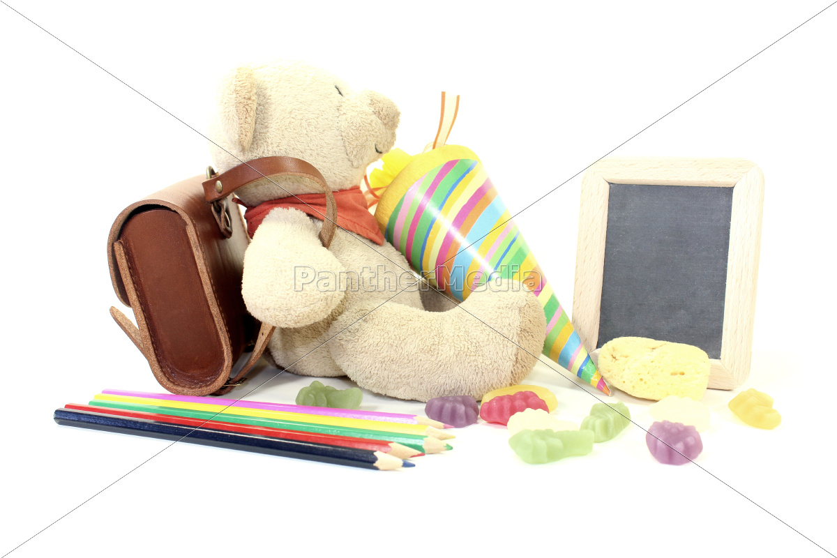 back, to, school, with, teddy - 11804077