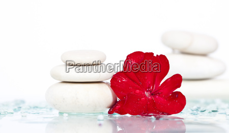 spa stones and red flower