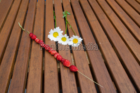 wild strawberries and daisies on a