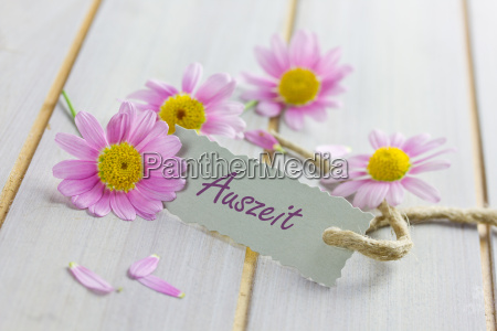 voucher with pink flowers