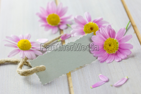 gift with pink flowers