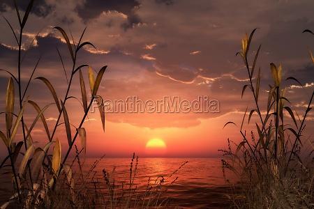 fantasy, landscape, - 11915927