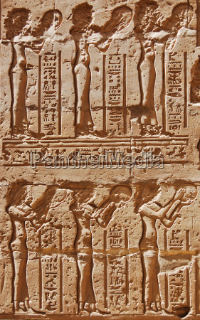 ancient egyptian reliefs on wall at