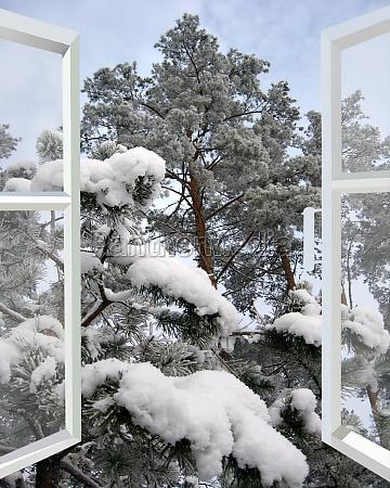 open window to snowy winter forest