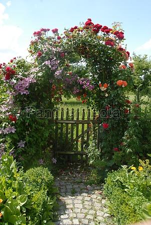 gates with climbing plants