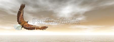 bald eagle flying 3d render