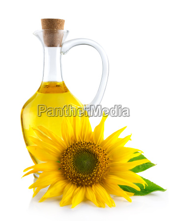 jug with sunflower oil isolated on