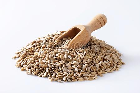 raw sunflower seed