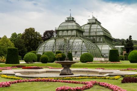 palm house vienna schonbrunn