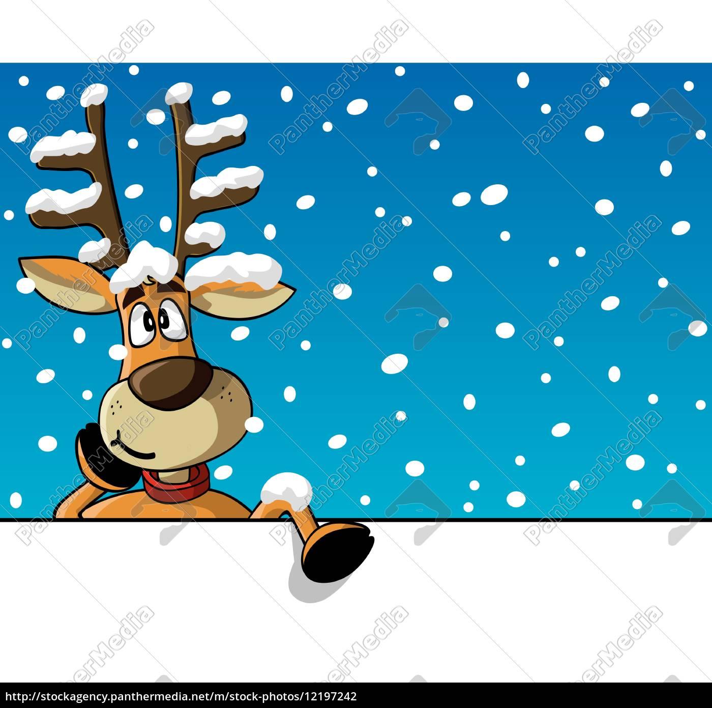 funny, reindeer - 12197242