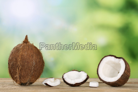 coconut with text free space