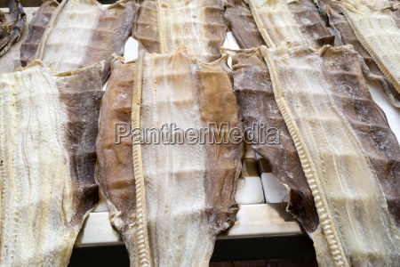 stockfish at a fish market