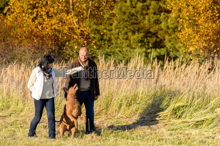 couple playing with dog autumn sunny
