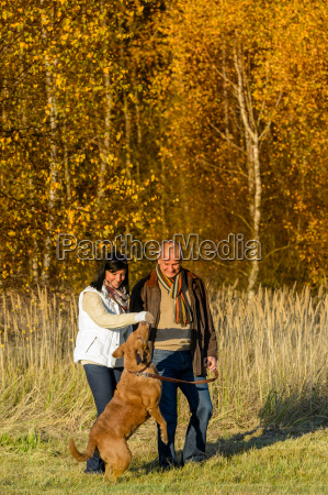 couple playing with dog autumn sunset