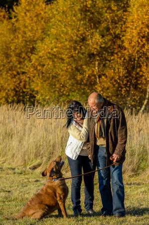 couple, training, dog, autumn, sunset, park - 12388388