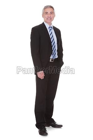 portrait of mature businessman