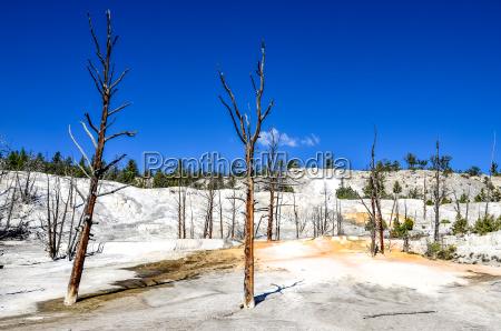 landscape view of angel terrace in