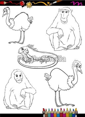 wild animals cartoon coloring book