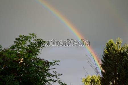 luminous rainbow