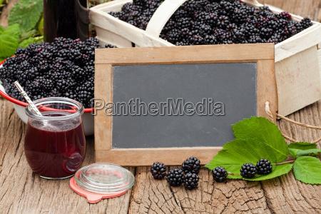 harvest fresh wild blackberries and blackberry