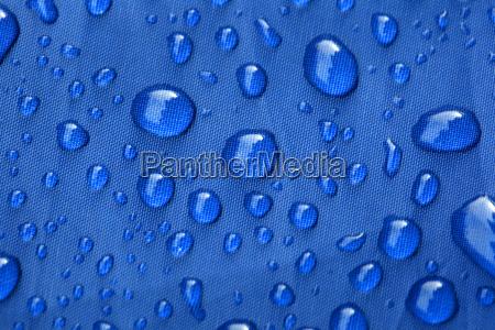 closeup of rain drops on a