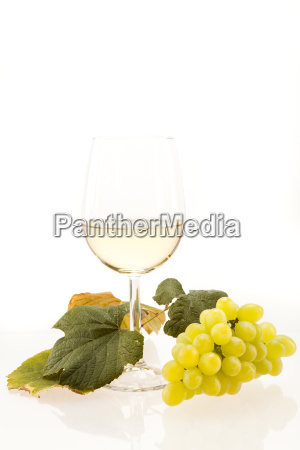 white wine in a glass with