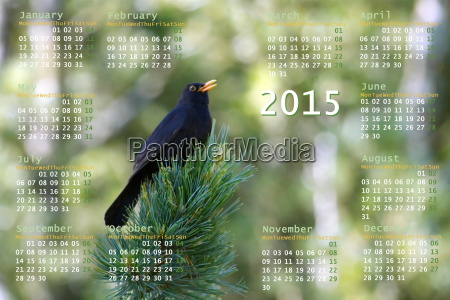 european 2015 year calendar with black