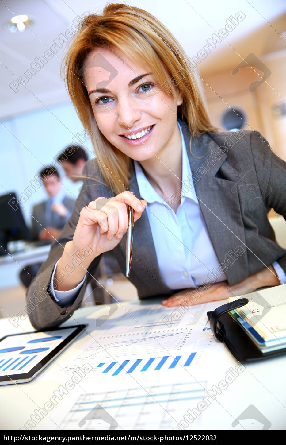businesswoman, working, on, sales, project - 12522032